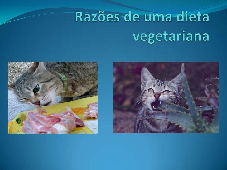 Razões de uma dieta vegetariana<br />