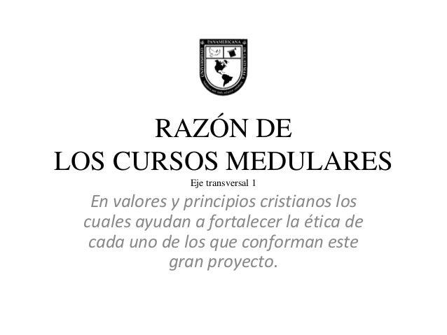 RAZÓN DE LOS CURSOS MEDULARES Eje transversal 1  En valores y principios cristianos los cuales ayudan a fortalecer la étic...