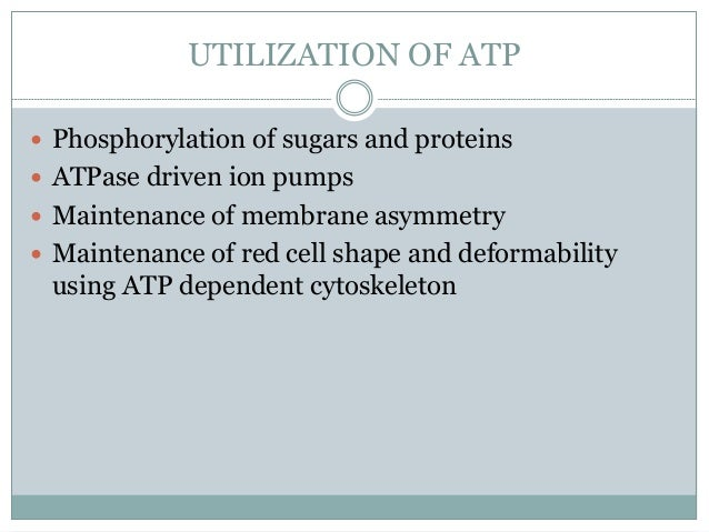 PENTOSE PHOSPHATE PATHWAY  Production of NADPH – 'reducing power' Glutathione is needed in reduced form for:  Eliminatio...