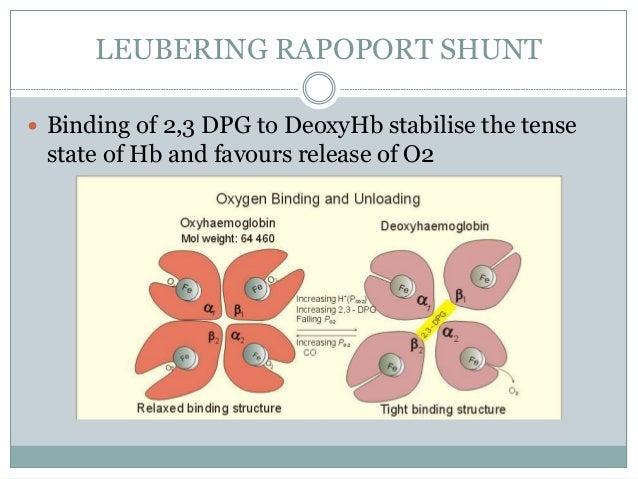HEMOGLOBIN OXYGEN DISSOCIATION  Dissociation and binding of oxygen by hemoglobin are not directly proportional to pO2. Si...
