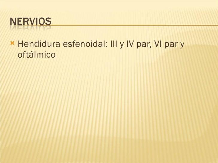 <ul><li>Hendidura esfenoidal: III y IV par, VI par y oftálmico </li></ul>