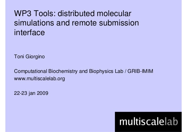 WP3 Tools: distributed molecular simulations and remote submission interface Toni Giorgino Computational Biochemistry and ...