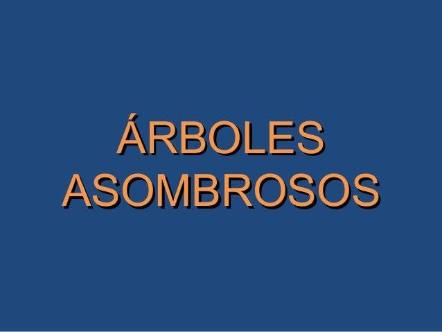 ÁRBOLESÁRBOLES ASOMBROSOSASOMBROSOS