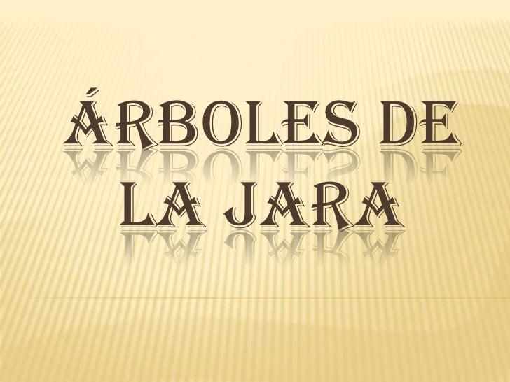 Árboles de la Jara<br />