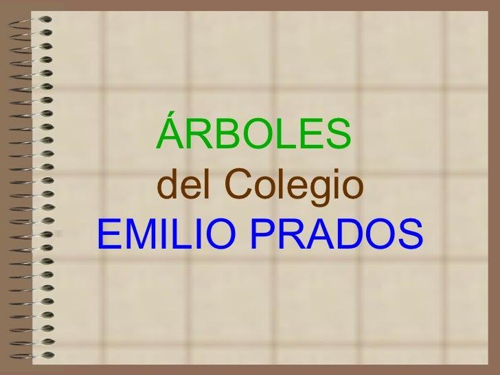 ÁRBOLES  del Colegio EMILIO PRADOS
