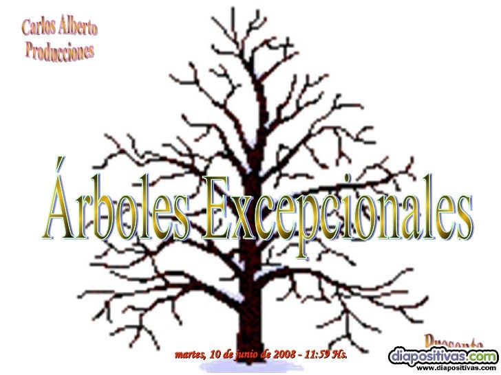miércoles, 3 de junio de 2009  -  11:34  Hs. Carlos Alberto Producciones Presenta Árboles Excepcionales