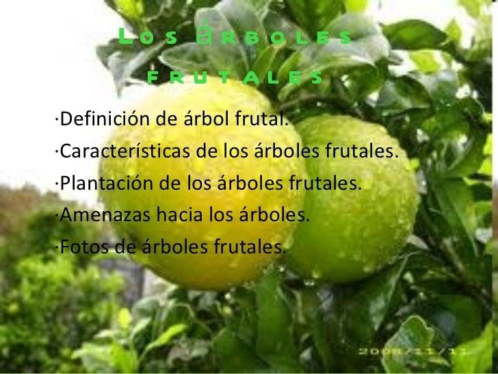 Rboles frutales - Cuando se plantan los arboles frutales ...