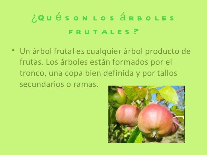Rboles frutales for Significado de un arbol sin hojas