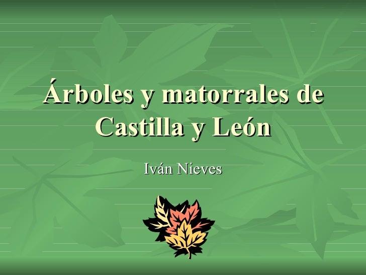 Árboles y matorrales de Castilla y León Iván Nieves