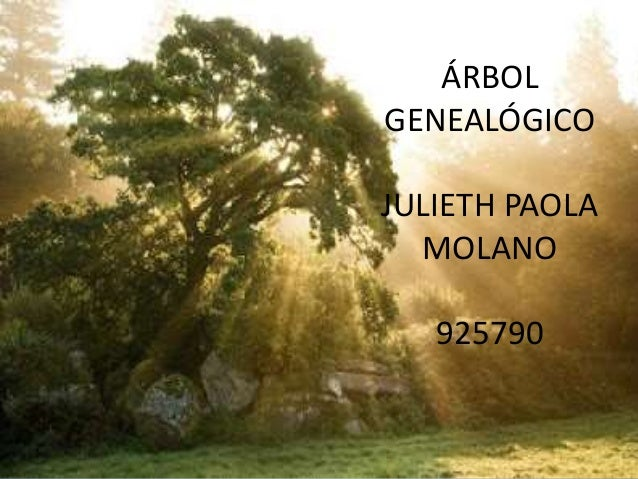 ÁRBOL GENEALÓGICO JULIETH PAOLA MOLANO 925790