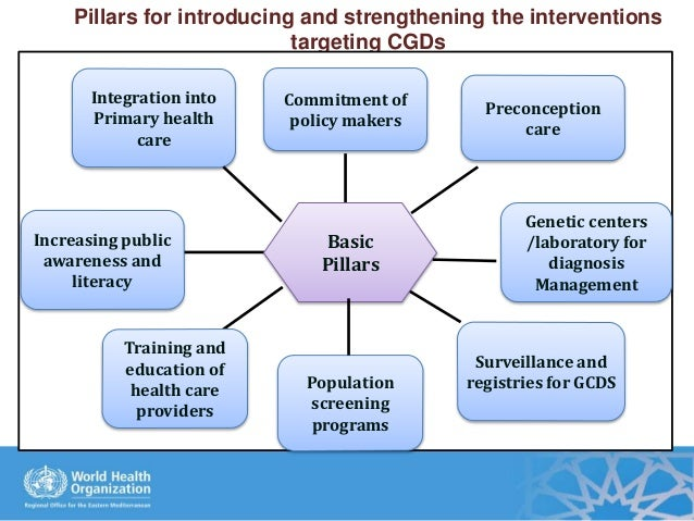 Pillars for introducing and strengthening the interventions targeting CGDs Increasing public awareness and literacy Survei...