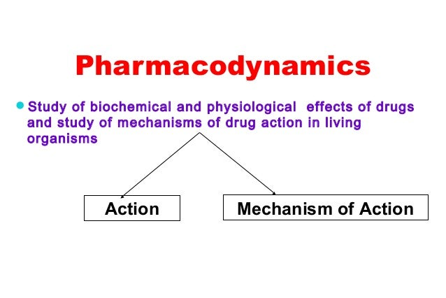 2.pharmacodynamics