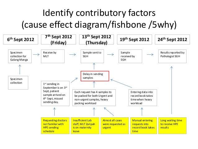 Needle Stick Fishbone Diagram Example Diy Enthusiasts Wiring