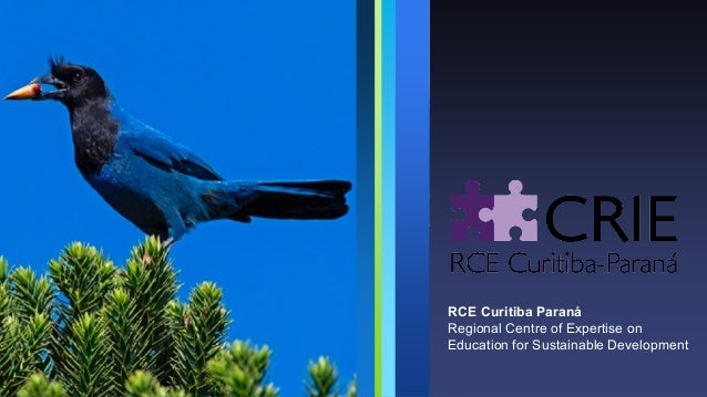 RCE Curitiba Paraná Regional Centre of Expertise on Education for Sustainable Development