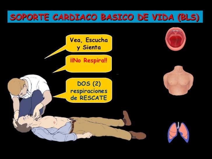 SOPORTE CARDIACO BASICO DE VIDA (BLS)          2
