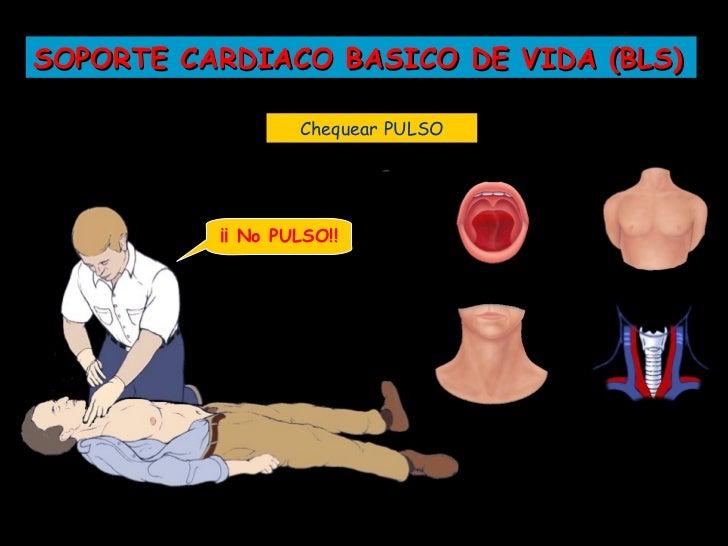 SOPORTE CARDIACO BASICO DE VIDA (BLS)           3...