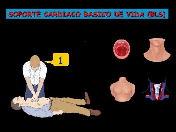 SOPORTE CARDIACO BASICO DE VIDA (BLS)           ...8...