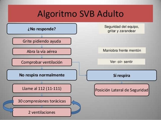 Algoritmo SVB Adulto                                 Seguridad del equipo,     ¿No responde?                gritar y zaran...