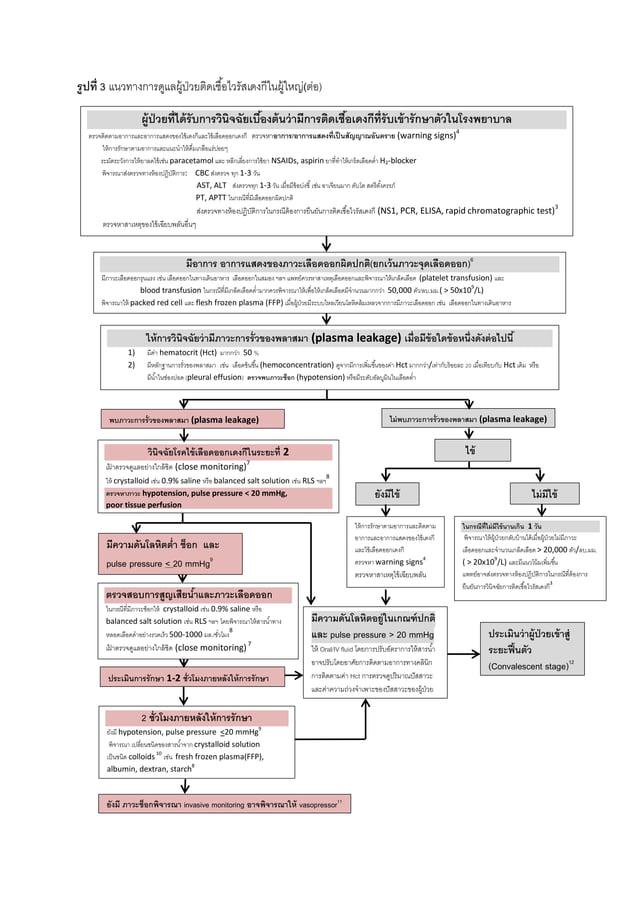 รูปที่ 3 แนวทางการดูแลผู้ป่วยติดเชื้อไวรัสเดงกีในผู้ใหญ่(ต่อ) ผู้ป่วยที่ได้รับการวินิจฉัยเบื้องต้นว่ามีการติดเชื้อเดงกีที่...