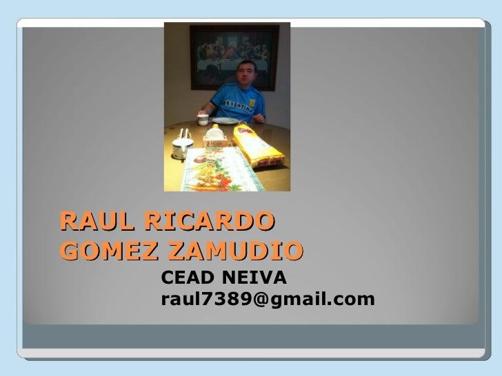 RAUL RICARDOGOMEZ ZAMUDIO     CEAD NEIVA     raul7389@gmail.com