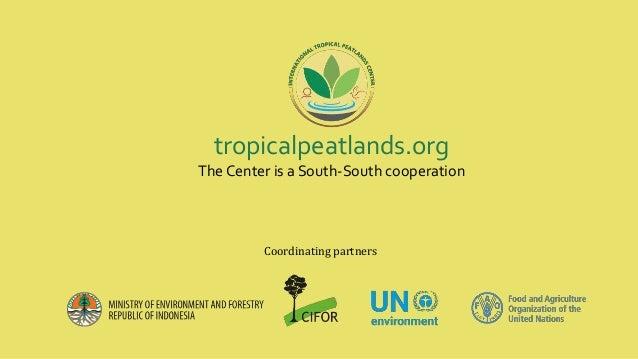 Peatlands conservation in Democratic Republic of Congo Slide 3