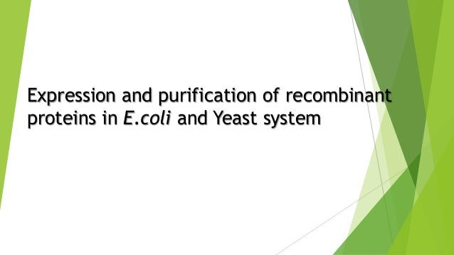 Expression and purification of recombinant proteins in E.coli and Yeast system