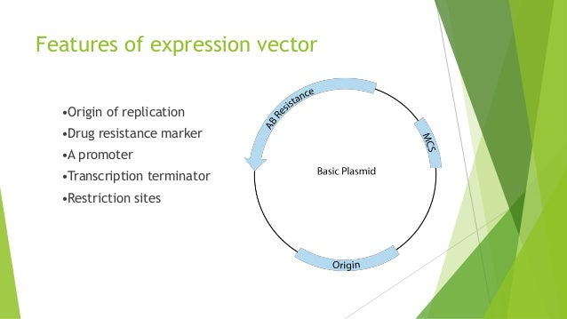 yeast expression system Prior art keywords yeast expression system yeast expression expression system prior art date 1987-11-18 legal status (the legal status is an assumption and is not a.