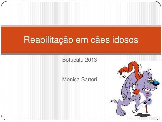 Reabilitação em cães idosos         Botucatu 2013         Monica Sartori