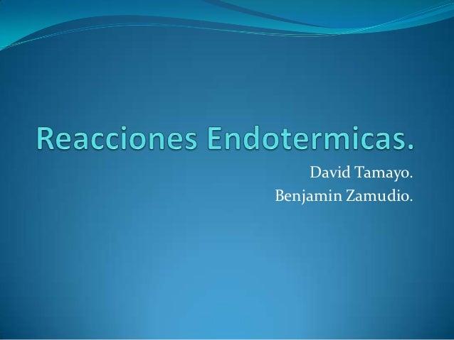 David Tamayo.Benjamin Zamudio.