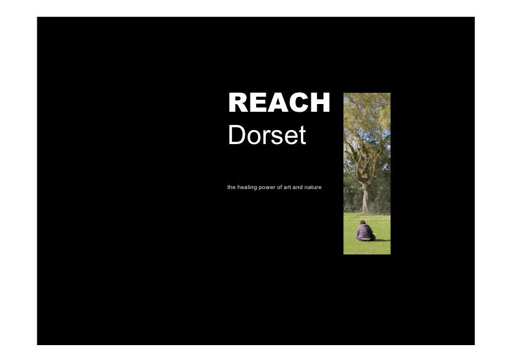 REACH Dorset the healing power of art and nature
