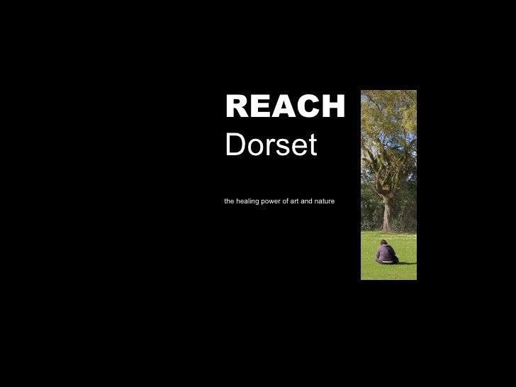 REACH Dorset the healing power of art and nature