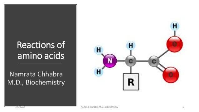 Reactions of amino acids Namrata Chhabra M.D., Biochemistry 7/5/2012 Namrata Chhabra M.D., Biochemistry 1