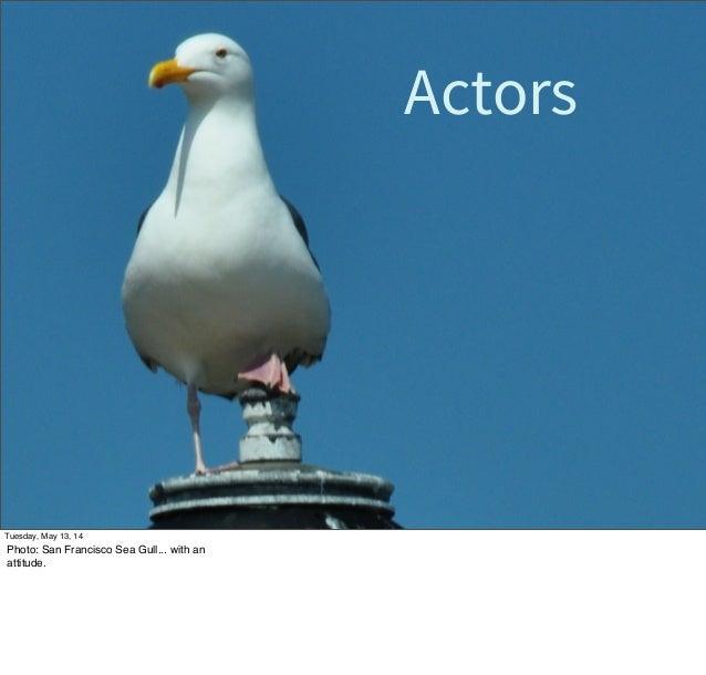 Actors Tuesday, May 13, 14 Photo: San Francisco Sea Gull... with an attitude.