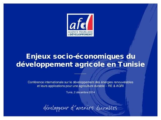 Enjeux socio-économiques du développement agricole en Tunisie Conférence internationale sur le développement des énergies ...