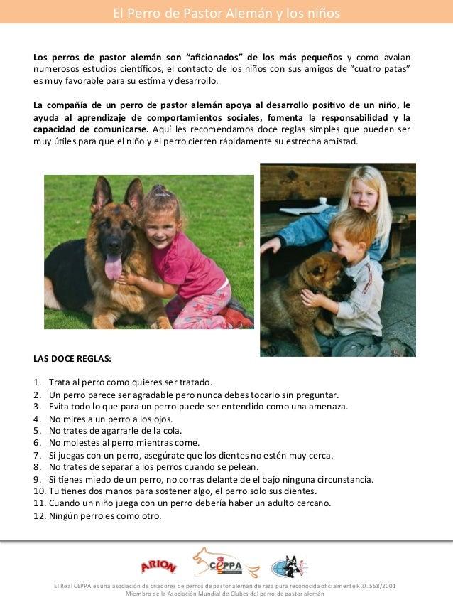 """El#Perro#de#Pastor#Alemán#y#los#niños#  Los* perros* de* pastor* alemán* son* """"aficionados""""* de* los* más* pequeños* y# co..."""