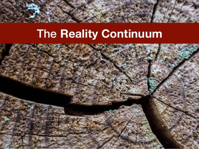 The Reality Continuum
