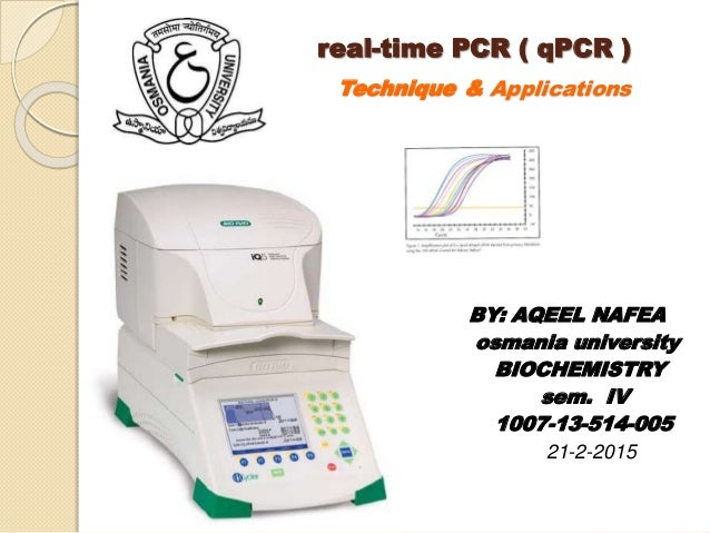 real time pcr thesis Multiplex real-time pcr in the detection and differentiation of bovine respiratory disease pathogens public deposited  5 thesis list of tablespdf:.