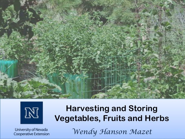 Harvesting and StoringVegetables, Fruits and Herbs    Wendy Hanson Mazet