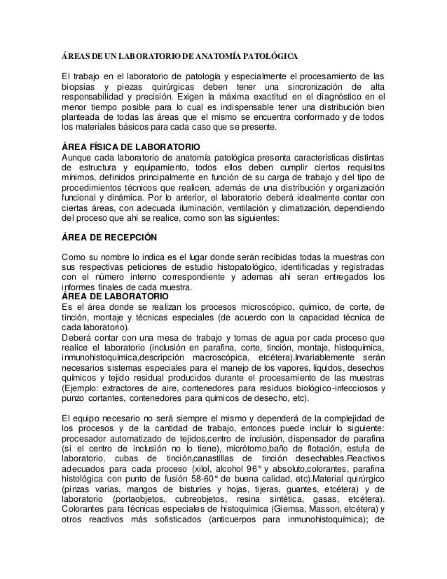 ÁREAS DE UN LABORATORIO DE ANATOMÍA PATOLÓGICA El trabajo en el laboratorio de patología y especialmente el procesamiento ...