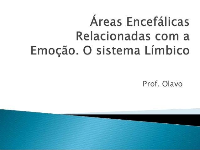 Prof. Olavo