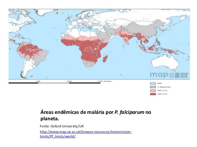 Áreas endêmicas de malária por P. falciparum no planeta. Fonte: Oxford University/UK http://www.map.ox.ac.uk/browse-resour...