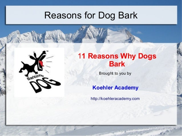 Reasons for Dog Bark11 Reasons Why DogsBarkBrought to you byKoehler Academyhttp://koehleracademy.com