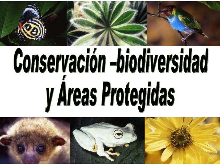 Conservación –biodiversidad y Áreas Protegidas