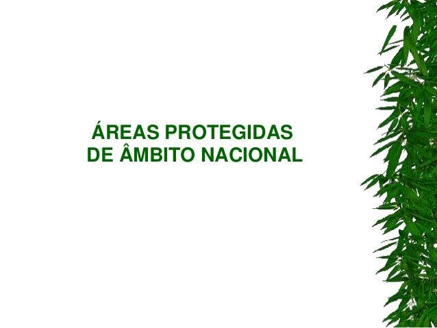 ÁREAS PROTEGIDAS DE ÂMBITO NACIONAL