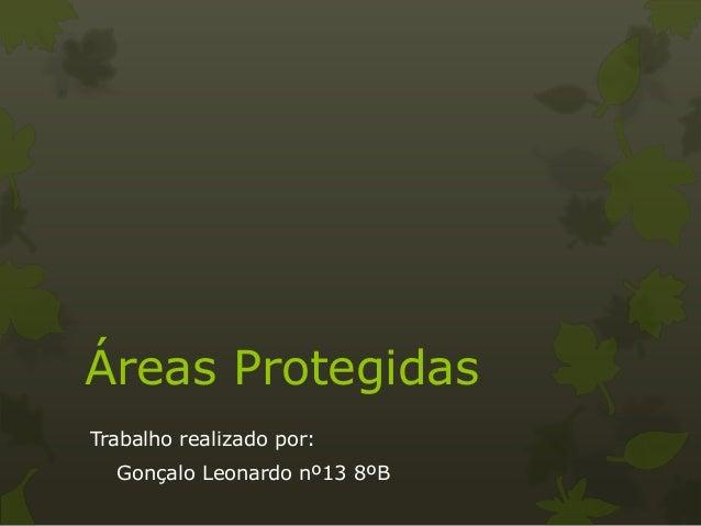 Áreas Protegidas Trabalho realizado por: Gonçalo Leonardo nº13 8ºB