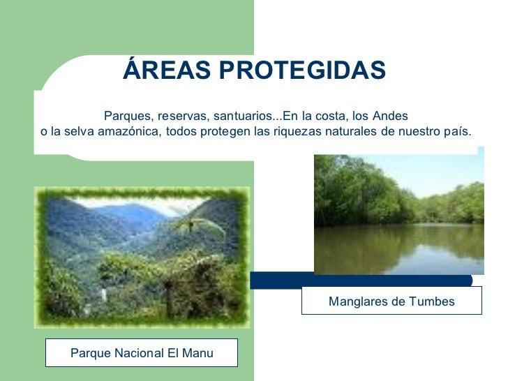 ÁREAS PROTEGIDAS Manglares de Tumbes Parque Nacional El Manu Parques, reservas, santuarios...En la costa, los Andes o la s...