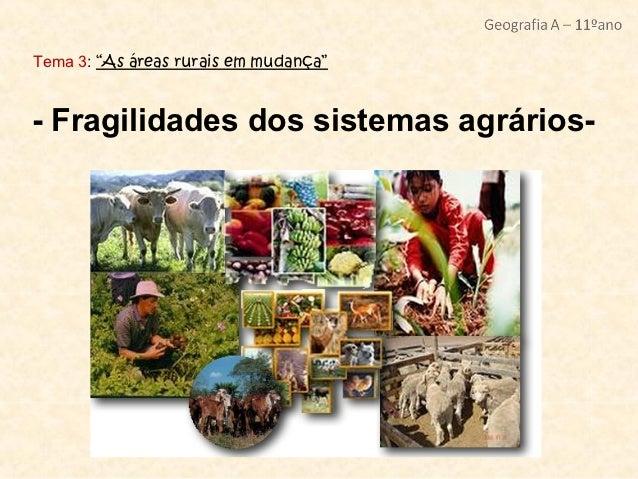 """Tema 3: """"As áreas rurais em mudança""""- Fragilidades dos sistemas agrários-"""