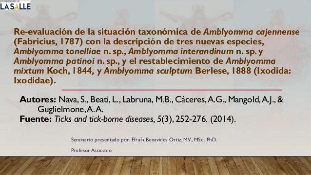 Re-evaluación de la situación taxonómica de Amblyomma cajennense (Fabricius, 1787) con la descripción de tres nuevas espec...