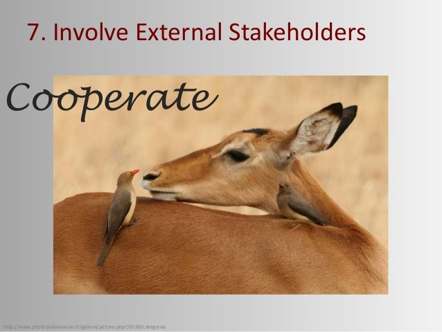 http://www.photoclubsenonais.fr/galerie/picture.php?/8138/categories 7. Involve External Stakeholders Cooperate