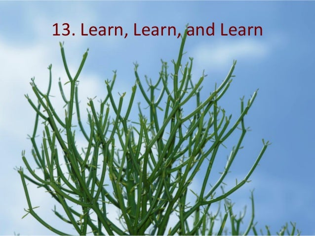 13. Learn, Learn, and Learn